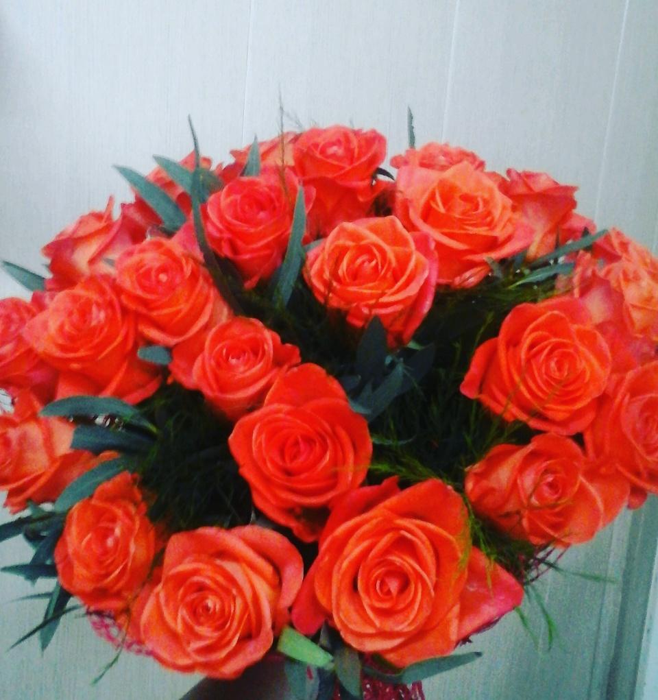 Купить розы оптом дешево спб агрофирма флос весна 2011 заказать рассаду цветов