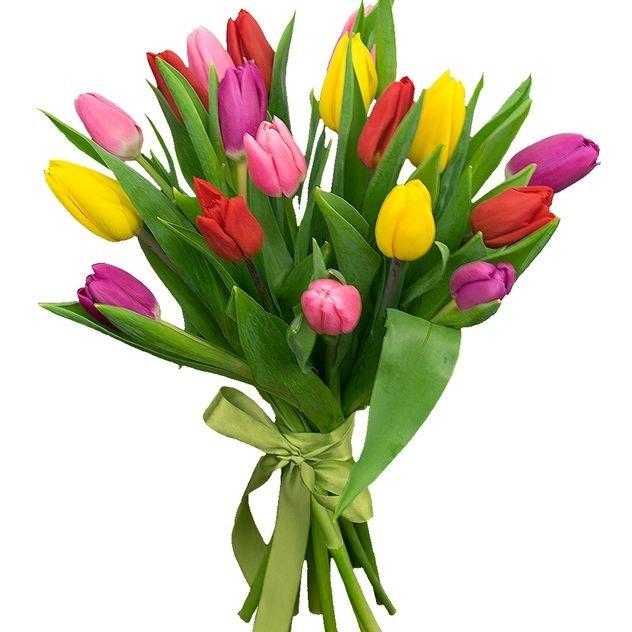 17 тюльпанов микс